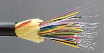 fiber1.jpg