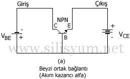 sekil4.10(a).jpg